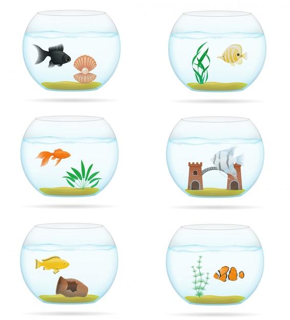 Pêcher dans une illustration vectorielle d'aquarium transparent Vecteur Premium