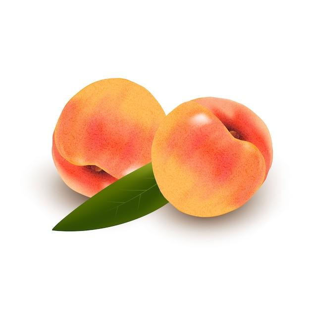 Pêches Abricots Jaunes Mûres Réalistes Sur Fond Blanc Faites Avec Un Filet De Dégradé Vecteur Premium