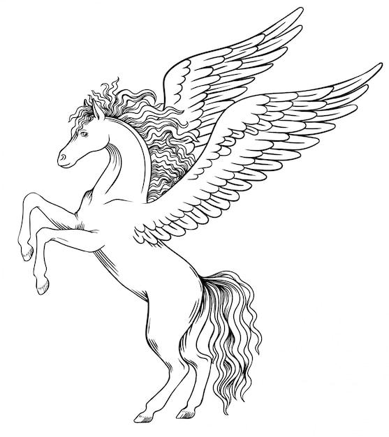 Pegasus décoller avant Vecteur Premium