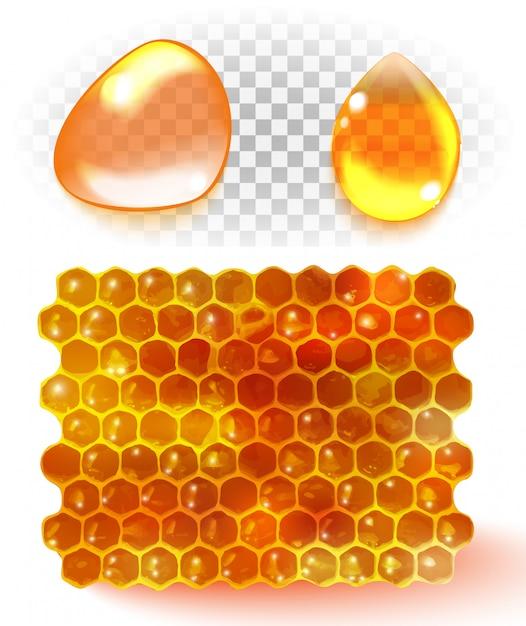 Peigne à miel Vecteur Premium