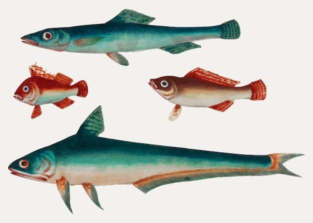 Peinture chinoise de deux poissons verts et de deux poissons bruns. Vecteur gratuit