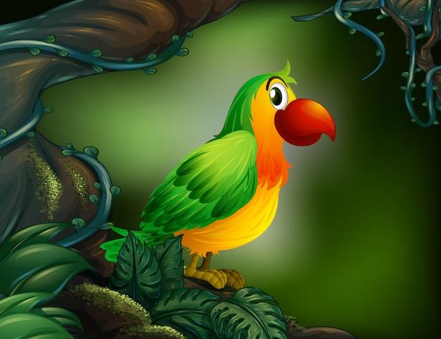 Un perroquet à la forêt tropicale Vecteur gratuit