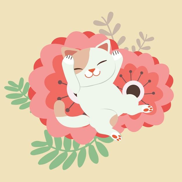 Le personnage de chat mignon qui dort sur la très grande fleur rouge. chat a l'air heureux. Vecteur Premium