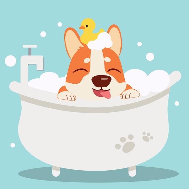 Le personnage de chien corgi mignon prenant un bain avec bathtub.it l'air très heureux. Vecteur Premium