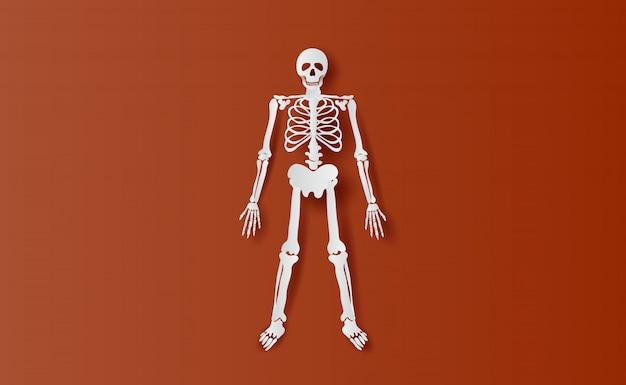 Personnages d'halloween en os simple squelette Vecteur Premium