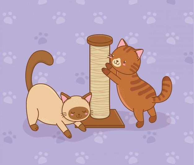 Personnages mascottes de petits chats Vecteur Premium
