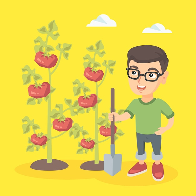 Petit garçon d'agriculteur caucasien cultivant des tomates. Vecteur Premium