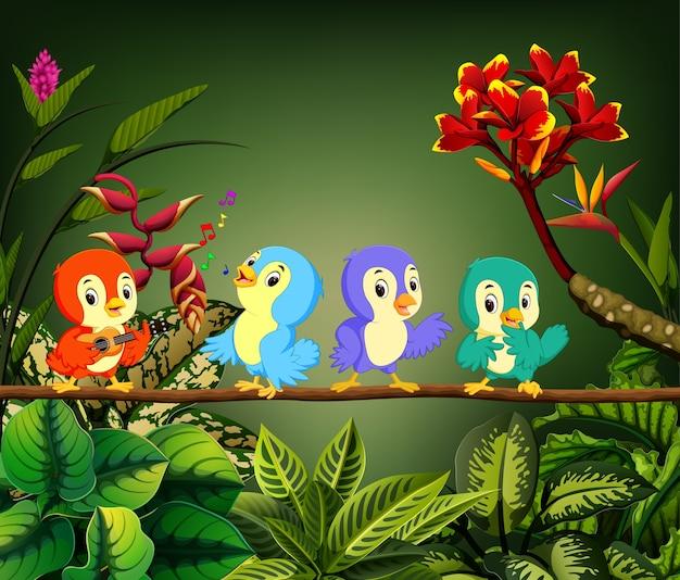 Petits oiseaux chantent la chanson dans la forêt Vecteur Premium