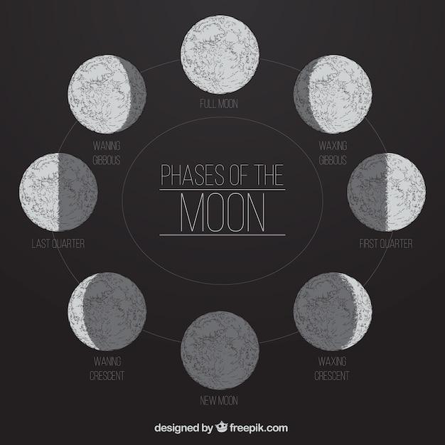 Les phases de la lune dans le style dessiné à la main Vecteur gratuit