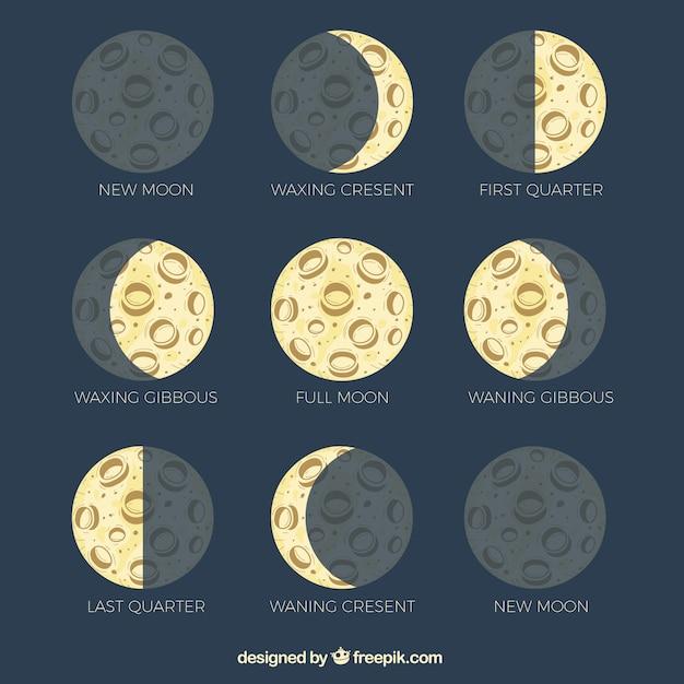 Phases de lune dessiné à la main Vecteur gratuit