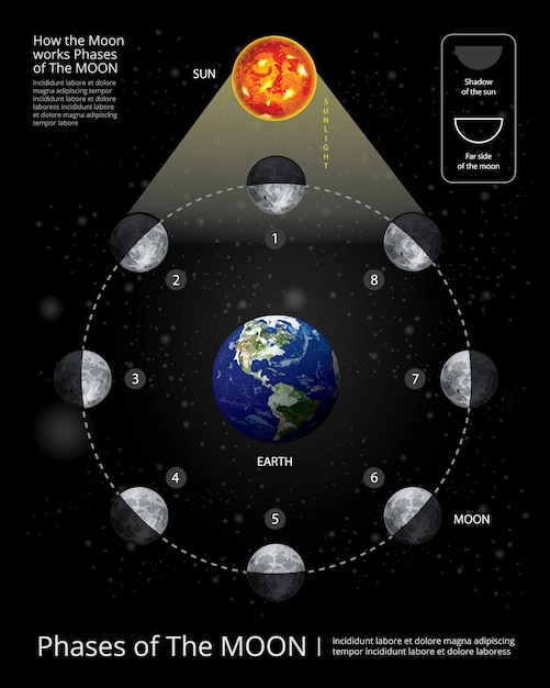 Phases de la lune vector illustration Vecteur Premium