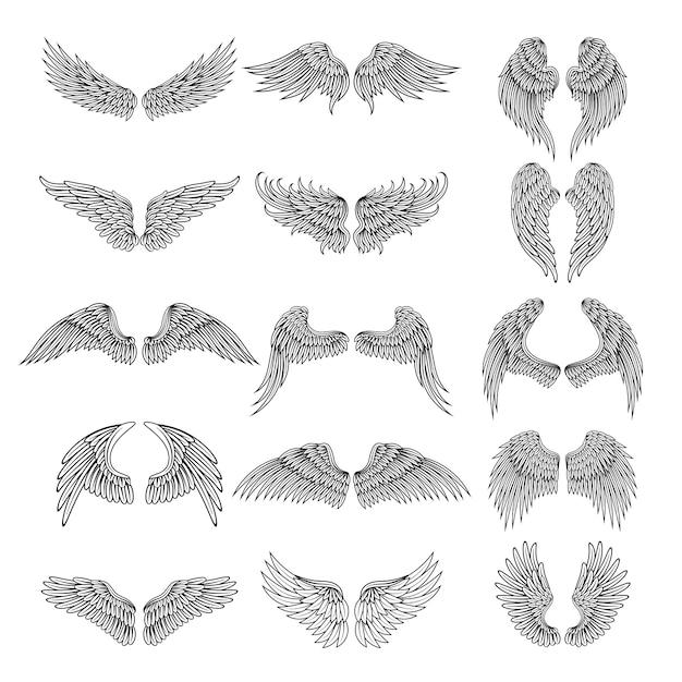 Photos De Tatouage De Différentes Ailes Stylisées. Illustrations Pour Logos. Ensemble De Tatouage Ange Ou Oiseau Aile Vecteur Premium