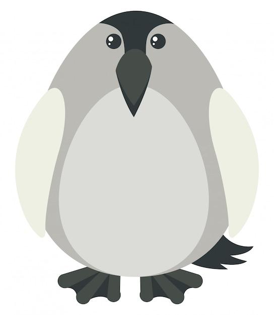 Pingouin de couleur grise Vecteur gratuit