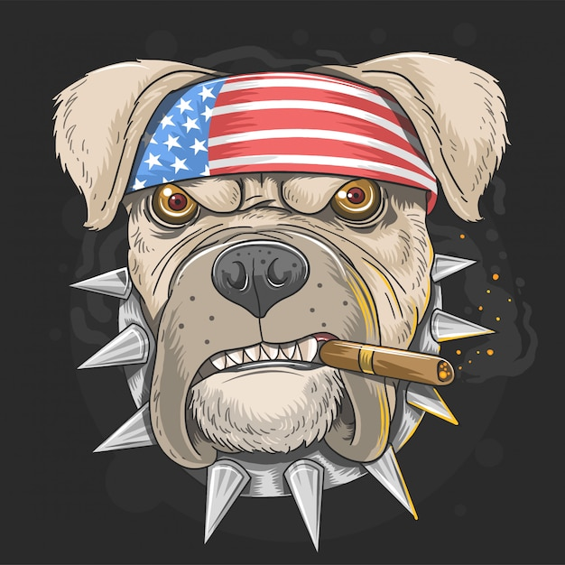 Pit bull dog american punk head Vecteur Premium