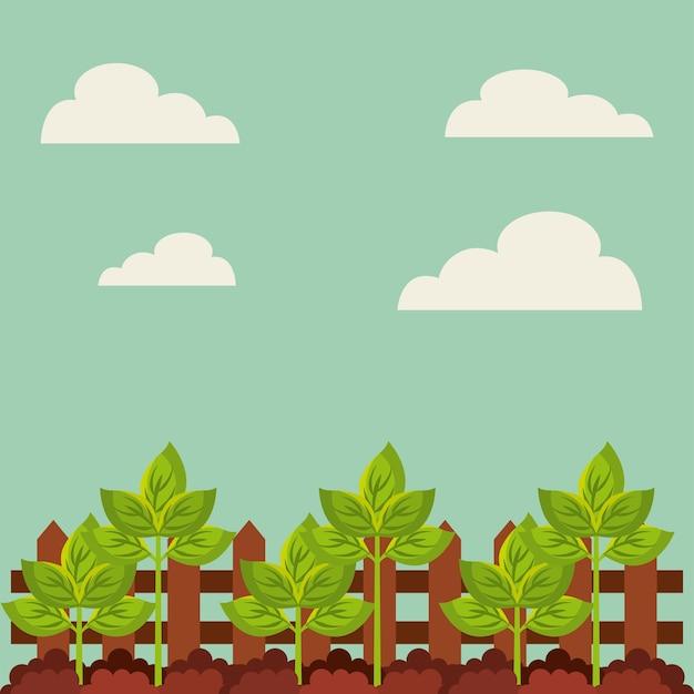 Plante verte en croissance Vecteur Premium