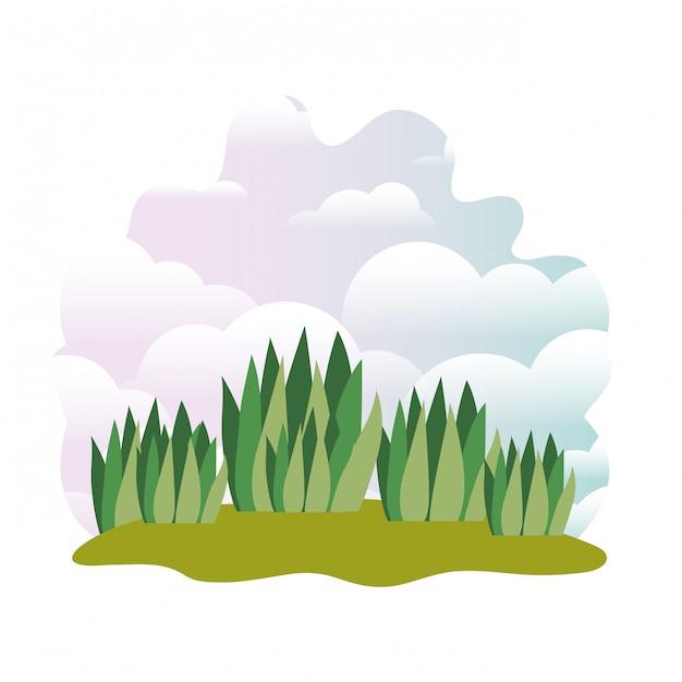 Planter dans un paysage isolé Vecteur Premium
