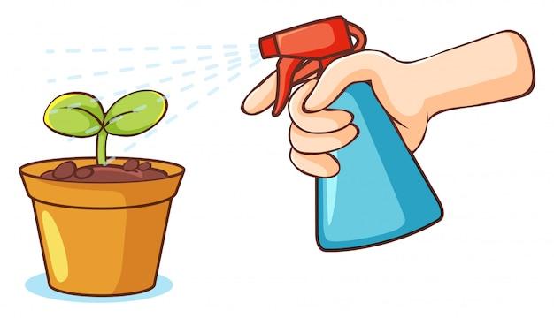 Planter et vaporiser le flacon sur fond blanc Vecteur gratuit