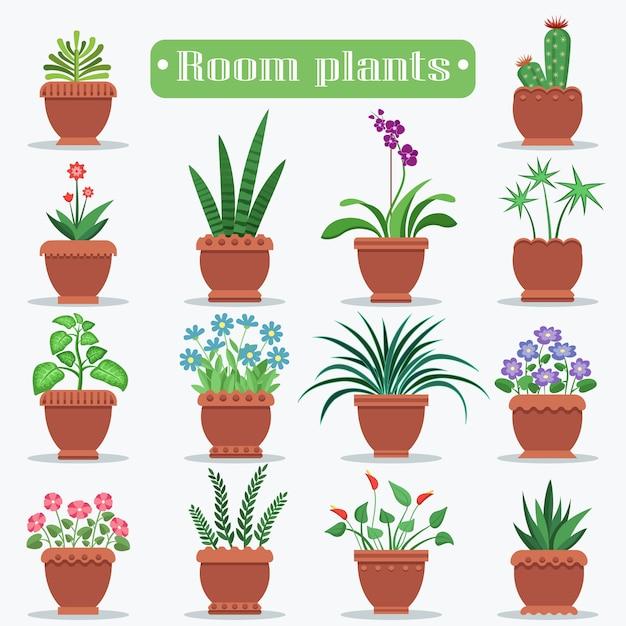 Plantes d'ambiance dans le set de vases en argile Vecteur Premium