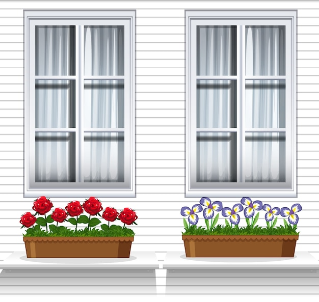 Plantes à Fleurs Près De La Fenêtre Vecteur gratuit