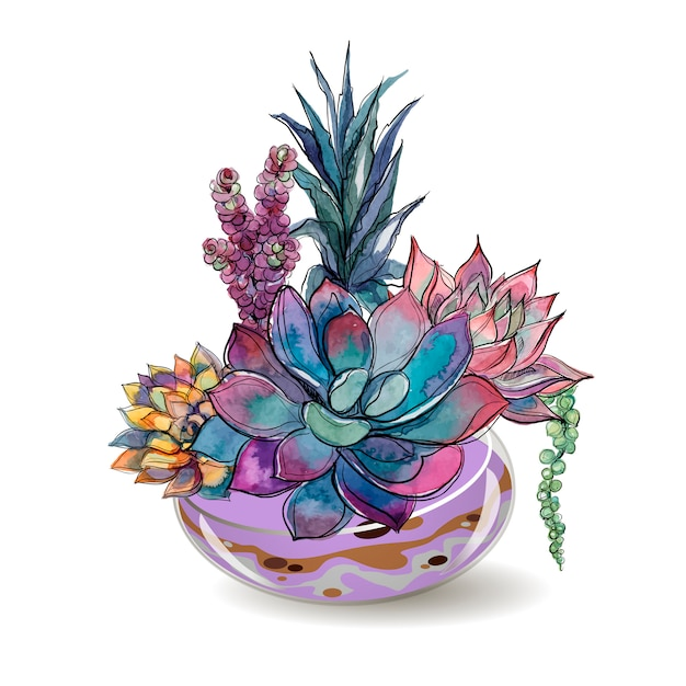 Plantes succulentes dans des aquariums en verre. aquarelle. Vecteur Premium