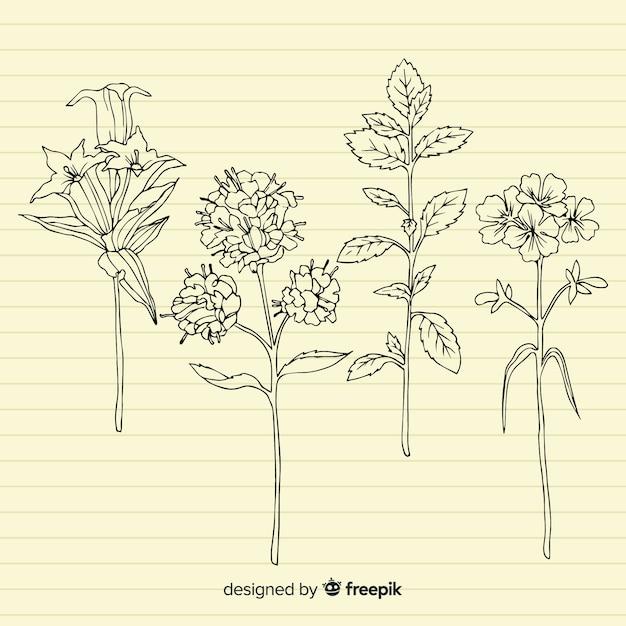 Plantes à tige sur fond de papier rétro Vecteur gratuit