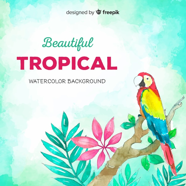 Plantes tropicales dessinées à la main et fond d'oiseau Vecteur gratuit