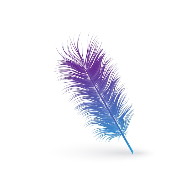 Plume D'oiseau Bleu Et Violet Moelleux Vecteur Premium