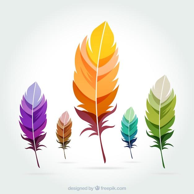 Plumes colorées Vecteur gratuit