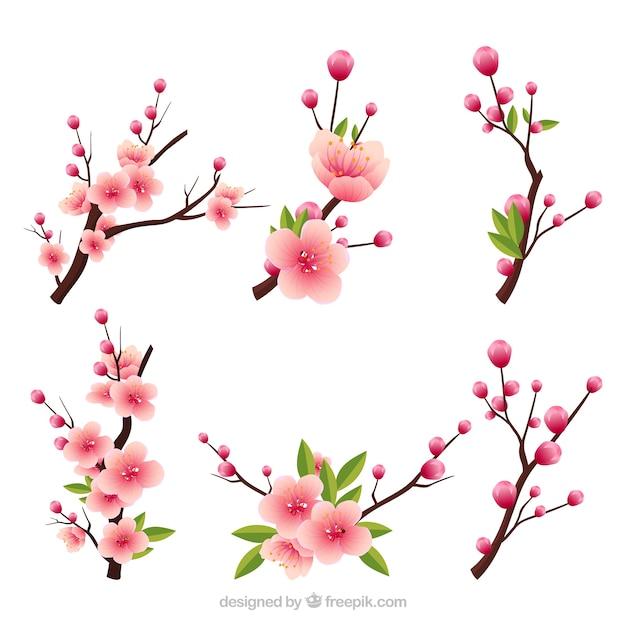 Plusieurs Branches En Fleurs Dans Le Style Réaliste Vecteur gratuit