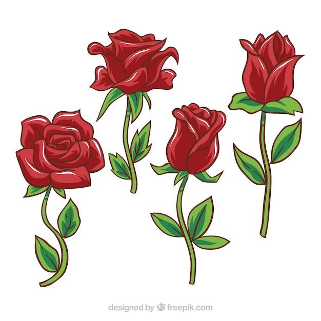 Plusieurs Roses Rouges Avec Des Dessins Différents
