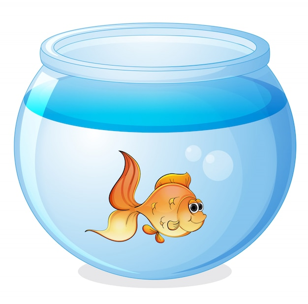 Un poisson et un bol Vecteur gratuit
