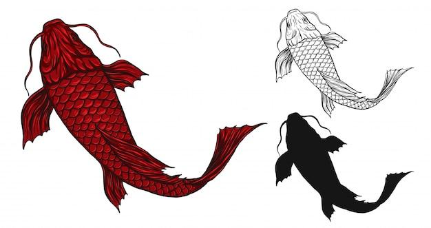 Poisson koi tatoué à la main dessin Vecteur Premium