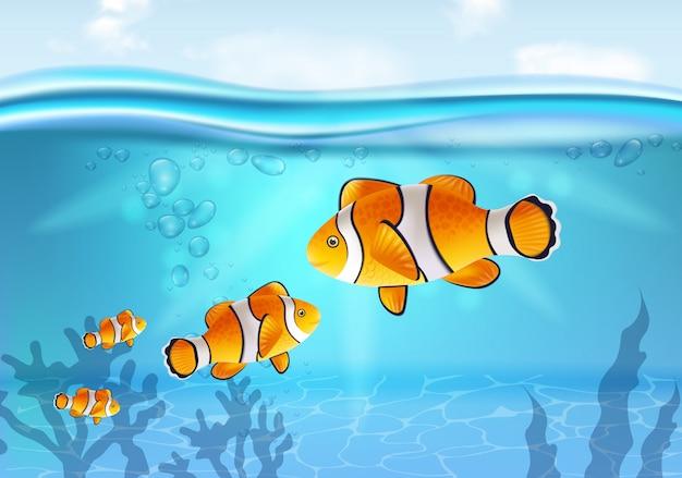 Poisson d'or sous l'eau Vecteur Premium