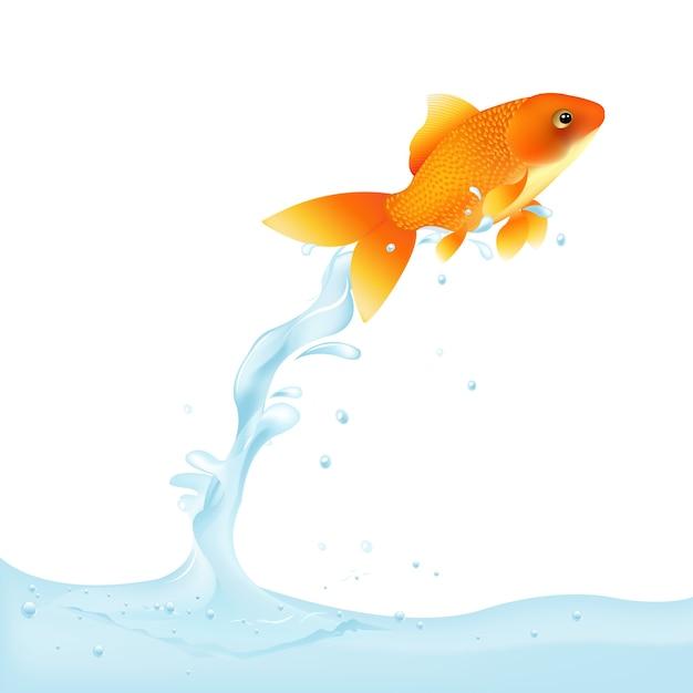 Poisson Rouge Sautant Hors De L'eau, Illustration Vecteur Premium