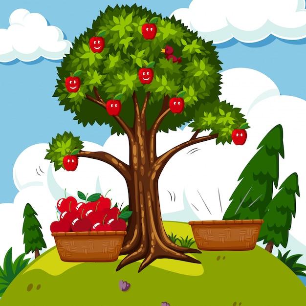 Pommier rouge sur le terrain Vecteur gratuit
