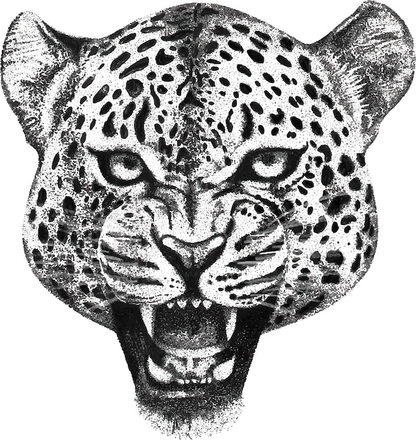 Portrait dessiné à la main de la tête de léopard rugissant Vecteur Premium