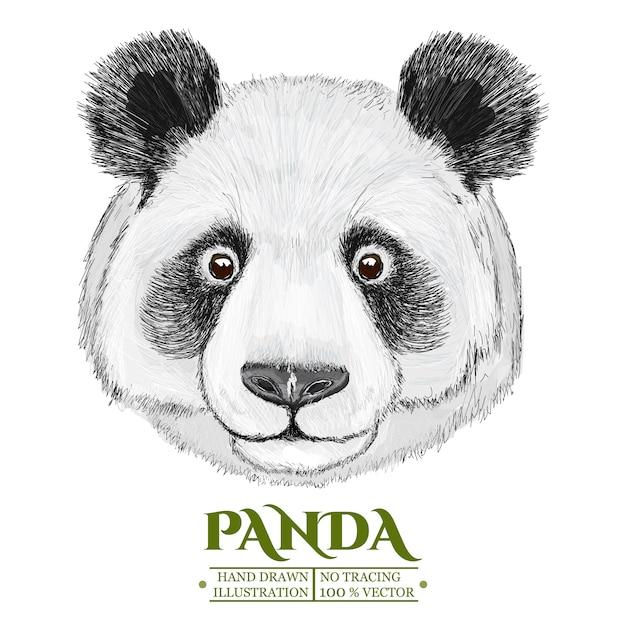 Portrait de panda, illustration vectorisée dessinée à la main Vecteur Premium
