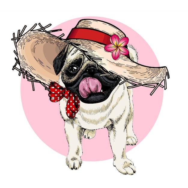 Portrait de vecteur de chien carlin portant chapeau de paille, de fleurs et de pois. Vecteur Premium