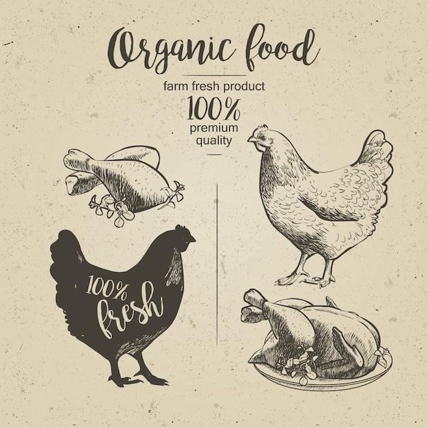 Poulet. poulet grillé Vecteur Premium
