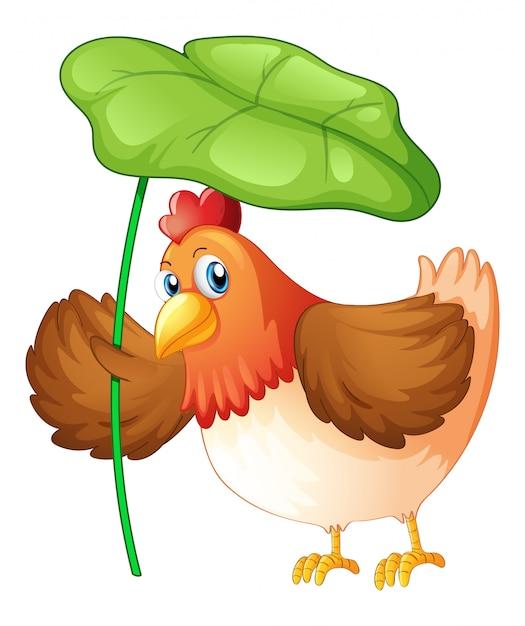Poulet Tenant Une Feuille Verte Sur Fond Blanc Vecteur gratuit
