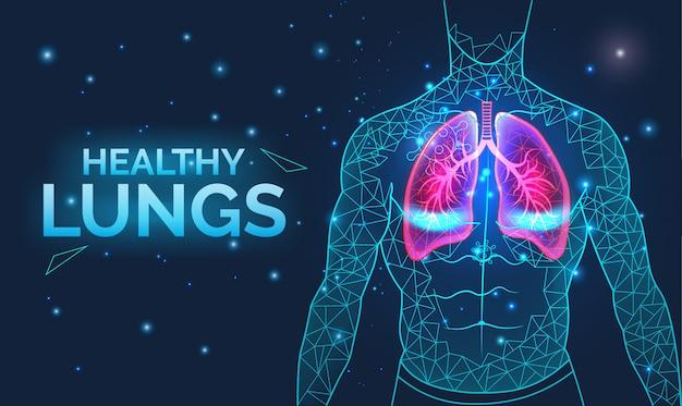 Poumons Sains, Système Respiratoire, Prévention Des Maladies, Avec Organes Du Corps Humain, Anatomie, Respiration Et Soins De Santé Vecteur Premium