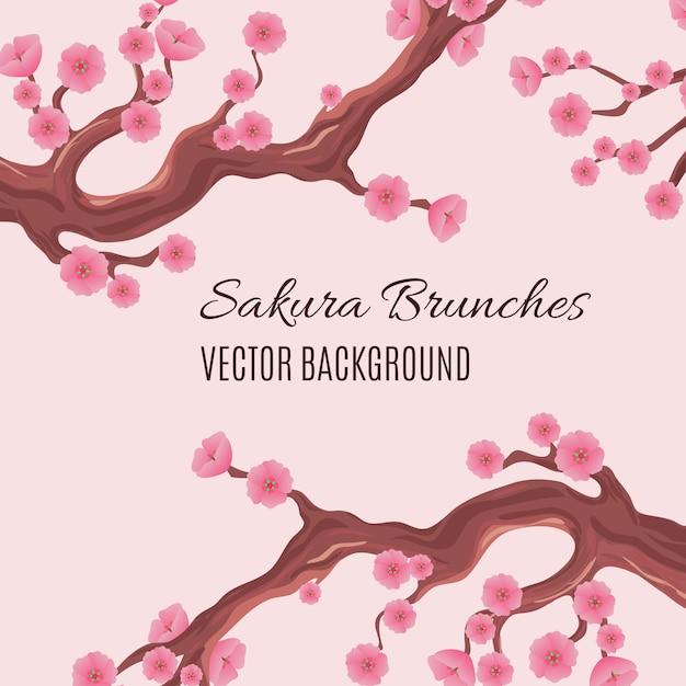 Printemps fond traditionnel japonais avec des brunchs de fleurs cerisier sakura Vecteur Premium