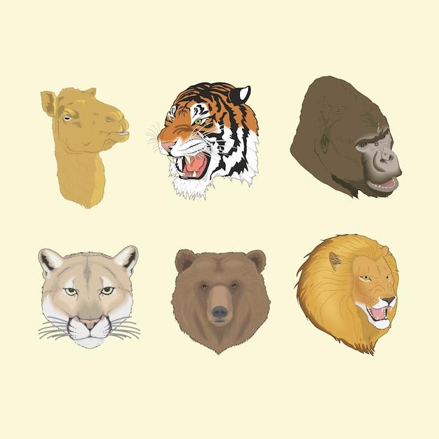 Puma gorille lion ours tigre tête de chameau Vecteur Premium