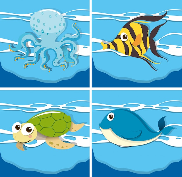 Quatre animaux marins différents Vecteur gratuit