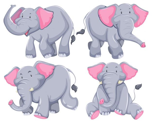 Quatre éléphants dans différentes poses Vecteur gratuit
