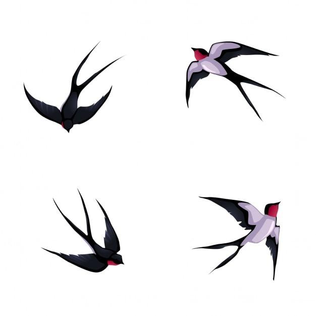 Quatre Hirondelles Bande Dessinée Vecteur D'animaux Isolés Vecteur gratuit