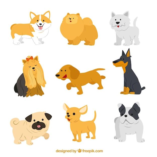 Races de chien mignon Vecteur gratuit