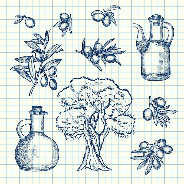 Rameaux d'olive dessinés à la main, des bouteilles et des arbres sur la feuille de cellule. branche d'olive et huile de bouteille Vecteur Premium