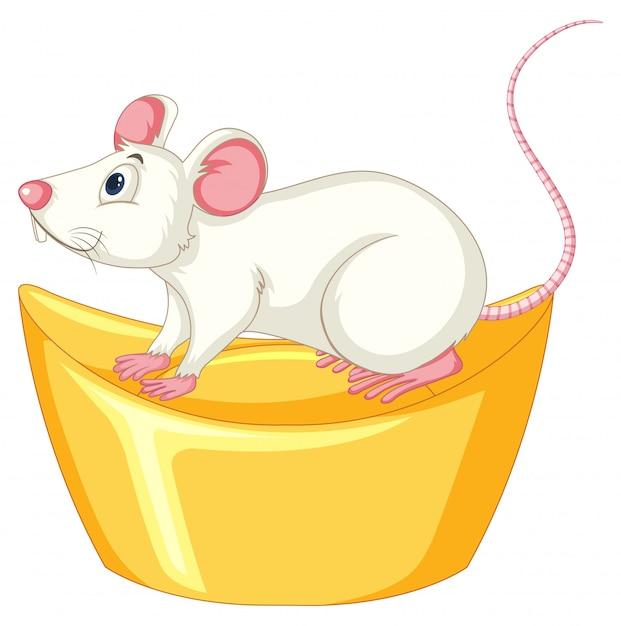 Rat Blanc Sur Lingot D'or Chinois Vecteur gratuit