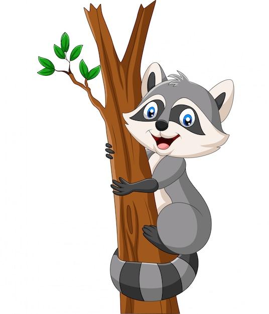 Raton laveur cartoon grimper sur l'arbre Vecteur Premium